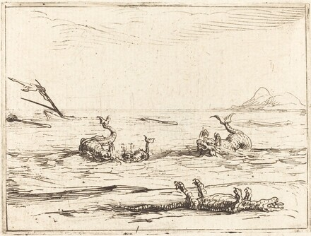 Dolphins and Crocodile