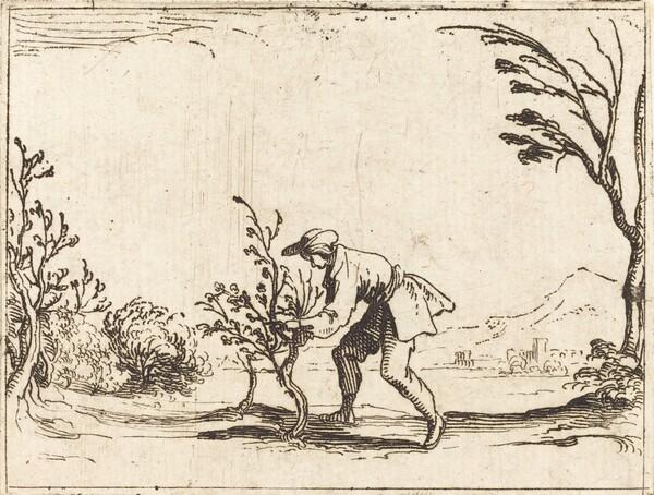 Man Cutting a Balm-Tree