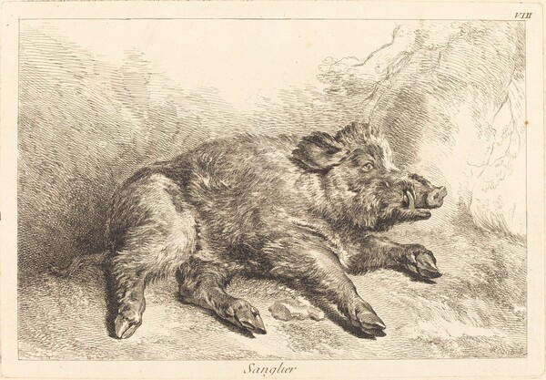 Sanglier (Wild Boar Lying Down, Head to the Right)