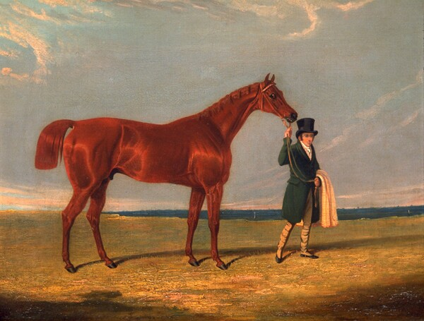 Race Horse and Trainer