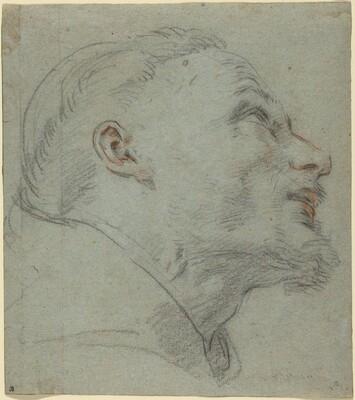 Head of Saint Francis