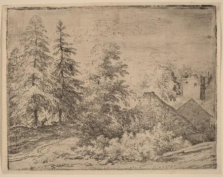 Man between Two Fir Trees