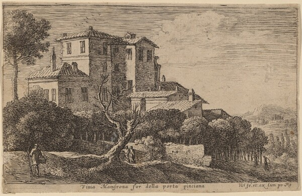 View of the Vineyard of the Villa Mamsrona