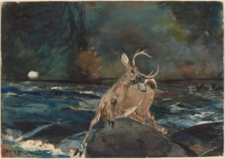 Winslow Homer, A Good Shot, Adirondacks, 1892
