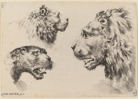 Three Lion Heads