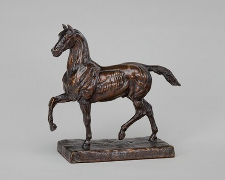 Flayed Horse II