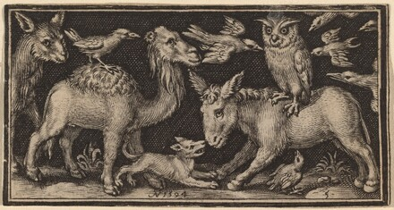 Owl on Back of Donkey, Bird on Back of Camel with Other Animals
