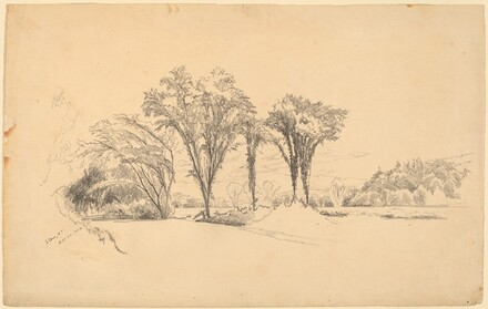 Elms at Stowe, Vermont