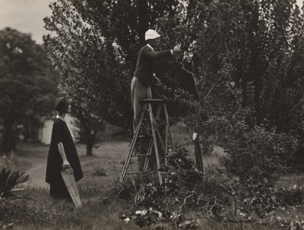 Georgia O'Keeffe and Donald Davidson Pruning Trees
