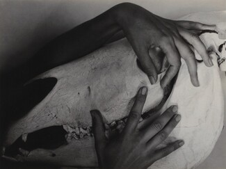image: Georgia O'Keeffe—Hands and Horse Skull