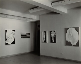 image: Georgia O'Keeffe—Exhibition at An American Place