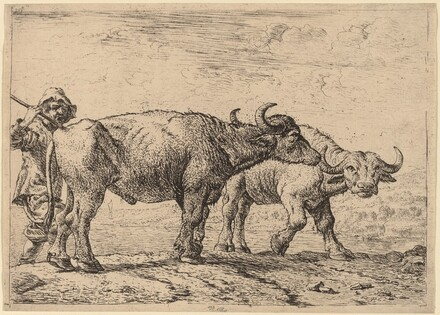 Two Buffaloes and a Herdsman