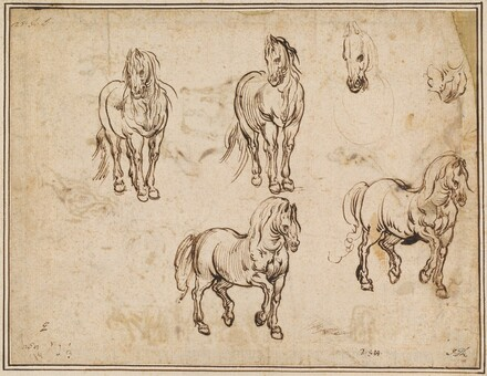 Studies of Horses [recto]