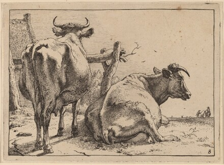 Two Cows Seen from Behind
