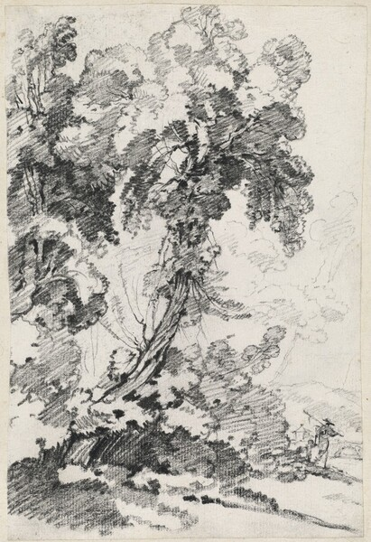 A Towering Tree with Travelers