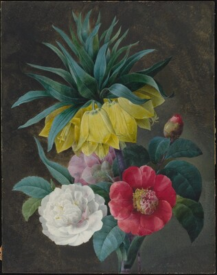 Four Peonies and a Crown Imperial