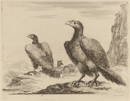 Two Eagles, Both with Heads Turned to the Left, On a High Cliff