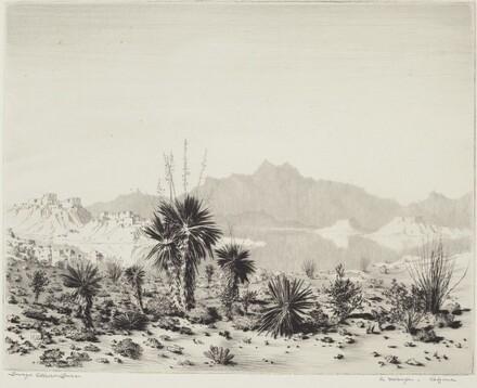 A Mirage, Arizona