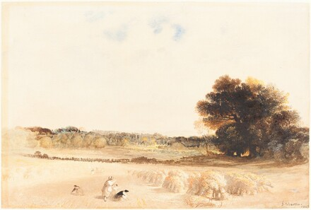 Gleaners in the Wheat Field