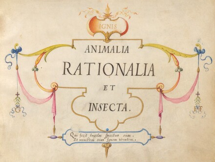 Animalia Rationalia et Insecta (Ignis):  Title Page