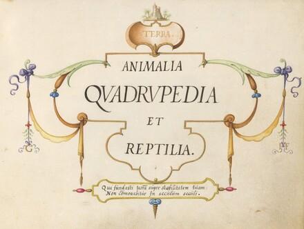Animalia Qvadrvpedia et Reptilia (Terra): Title Page