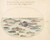 Animalia Aqvatilia et Cochiliata (Aqva): Plate XXVII
