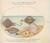 Animalia Aqvatilia et Cochiliata (Aqva): Plate XXXII
