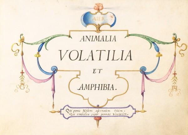 Animalia Volatilia et Amphibia (Aier):  Title Page