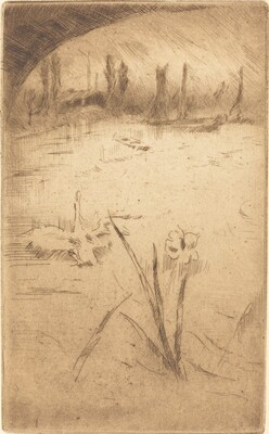 Swan and Iris