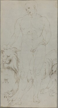 Male Nude with a Lion [verso]