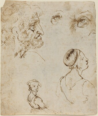 Leonardo da Vinci, Sheet of Studies [recto], probably 1470/1480