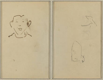 Boy's Face; Two Sheep [verso]