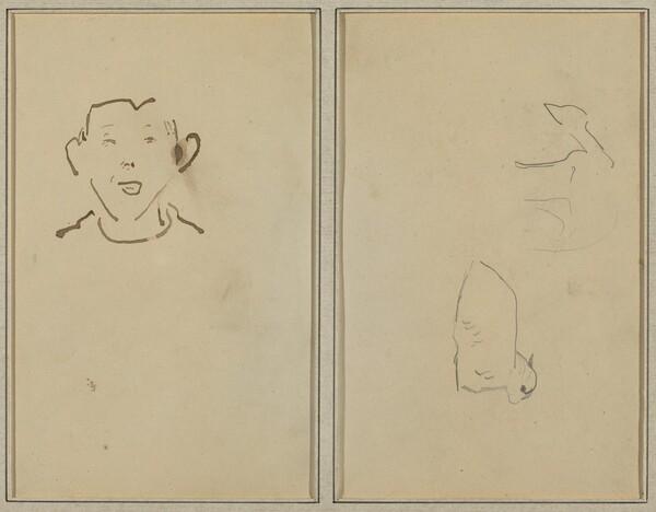 Boy's Face; Two Sheep [verso]