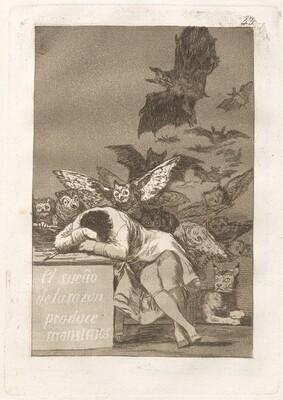 El sueño de la razon produce monstruos (The Sleep of Reason Produces Monsters)