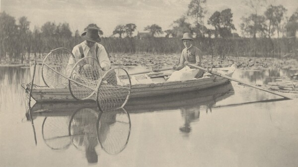 Setting the Bow-Net