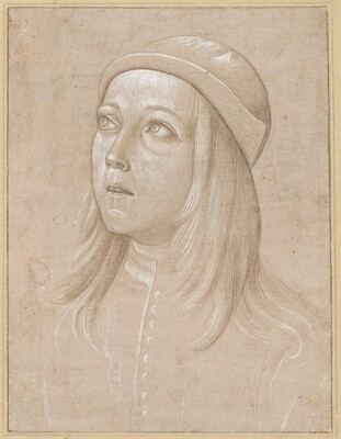 Head of a Youth Looking Up