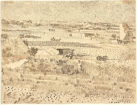 Harvest--The Plain of La Crau