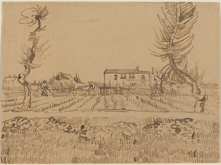 Ploughman in the Fields near Arles