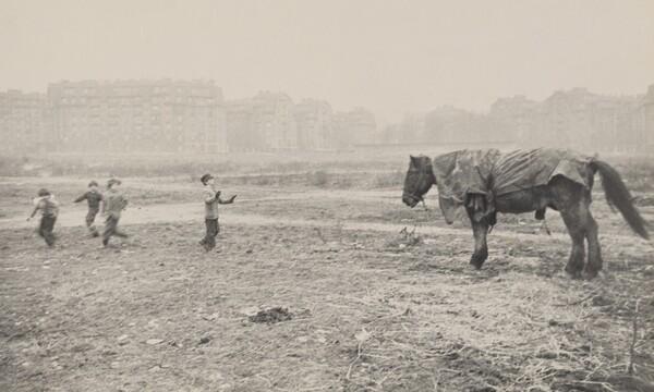 Horse and Children/Paris