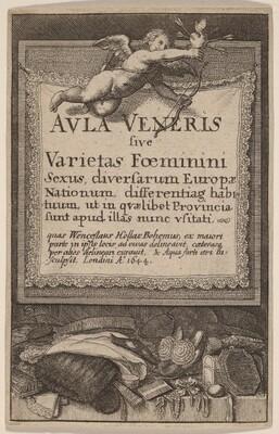 Aula Veneris: Title Page