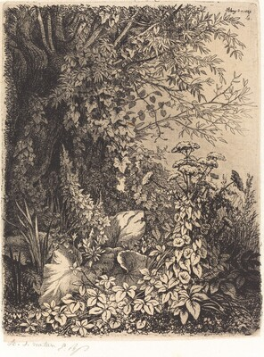 La bardane au saule (Burdock with Willow)