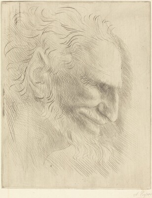 Study for the Head of a Man (Etude de tete d'homme)
