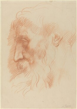Study of a Man's Head [recto]