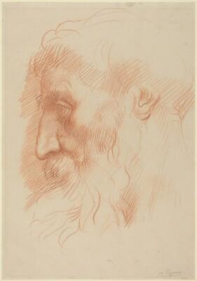 Study of a Man's Head [recto]