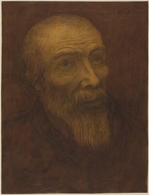 Head of a Bald Man with a Beard
