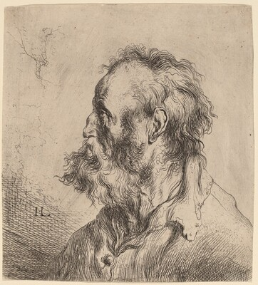 Bust of a Bearded Old Man