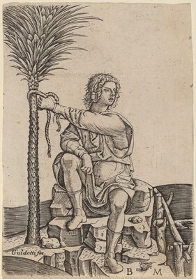 Man Seated by a Palm Tree