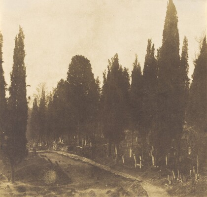 Turkey: Scutari Cemetery