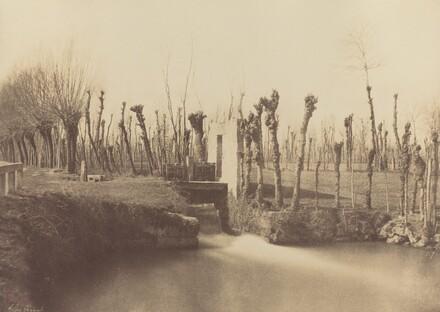 Landscape, Montebello
