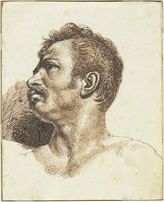 Head of a Man [recto]
